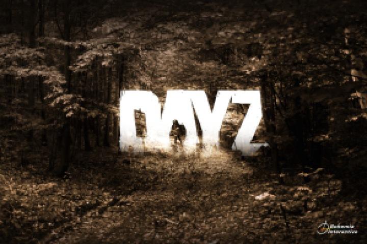 DayZ-Artwork présentation